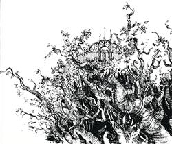 Forêt racine labyrinthe - (c) Illustration de Bruno Mallart