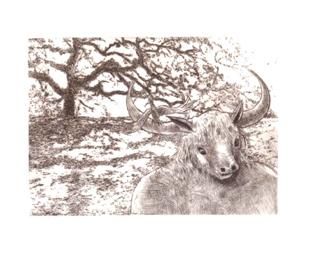 Minotaure à l'arbre, François Robert, Pointe sèche