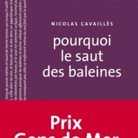 pourquoi le saut des baleines, Nicolas Cavaillès, Editions du Sonneur