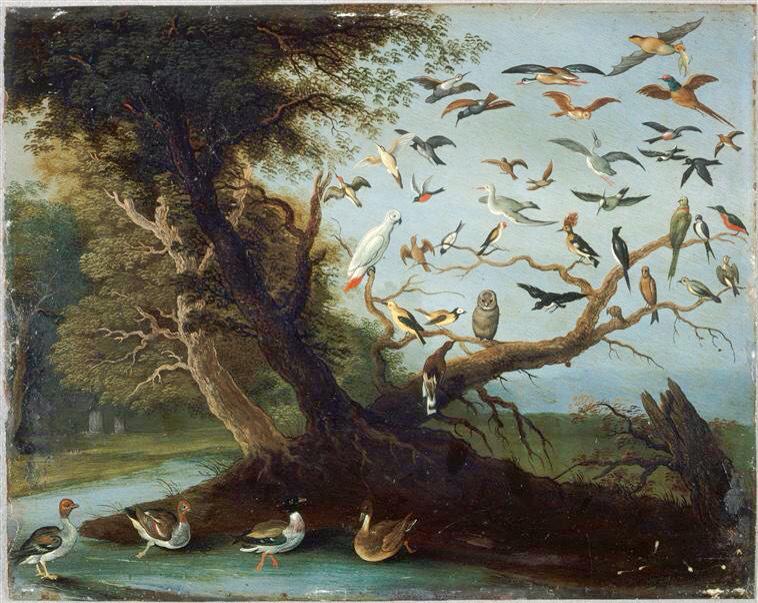 Jan Van Kessel (Pays-B. 1626-1679), L'Arbre aux oiseaux, huile sur cuivre, 17 x 22 cm, Rennes, musée des Beaux-Arts